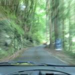土曜スペシャル「知られざる国道(酷道)の旅3」磯山さやか 小島よしお 安田大サーカス