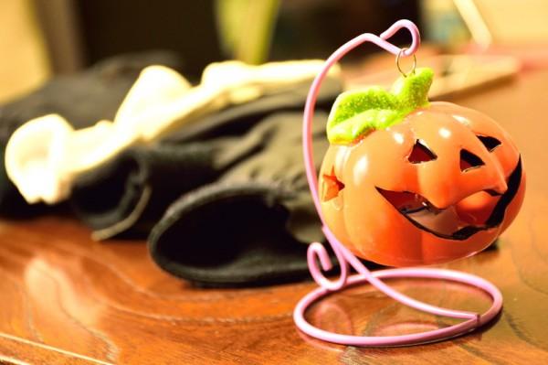 かぼちゃと手袋2