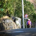 2015年初詣は八栗寺へ!アクセス方法と参拝の注意点。八栗ケーブルがおすすめ!
