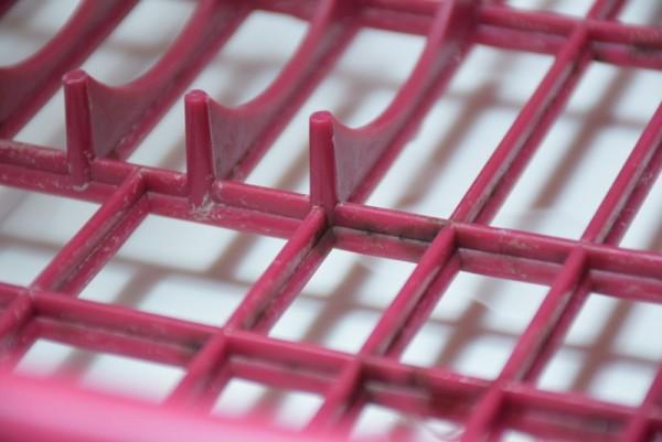 プラスチックにカビが生える
