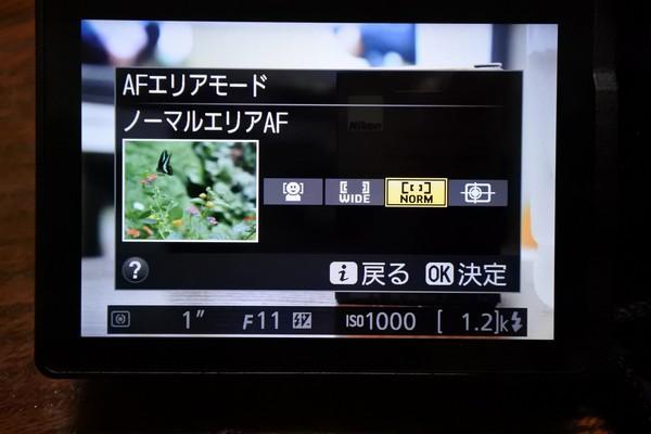 DSC_0204_01