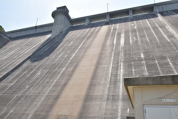 吉田ダムの高さ2