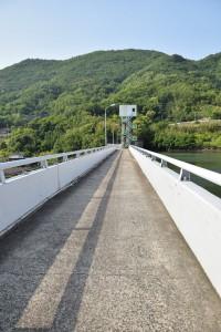 殿川ダム堤頂2