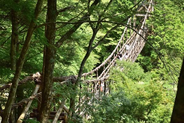 二重かずら橋 男橋