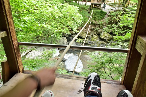 徳島 野猿