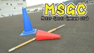 MSGC 画像