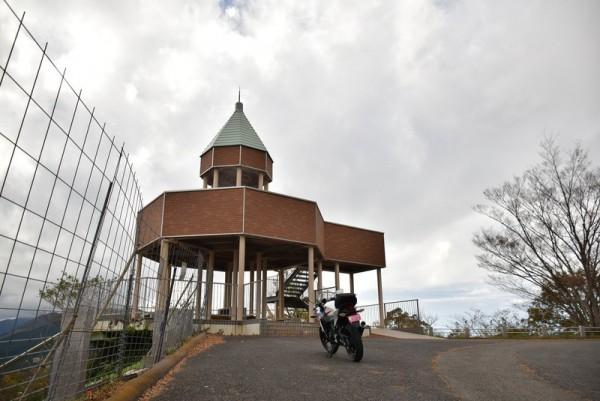翠波高原 コスモス展望台