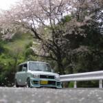 """四国各県オススメ花見スポット!ドライブで行ってみたい""""桜の名所ランキング""""と駐車場情報"""