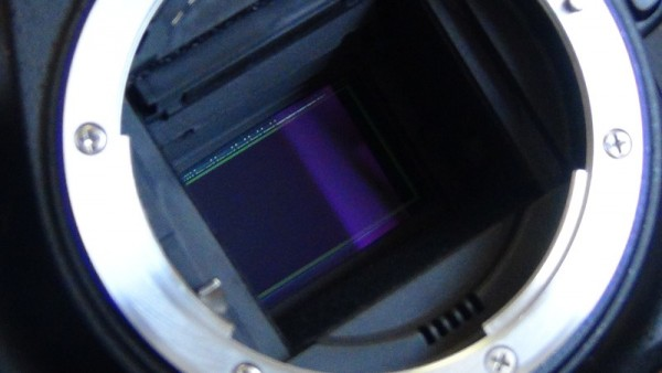 ニコン イメージセンサー
