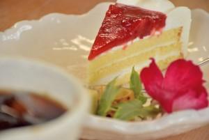 花ばたけケーキ