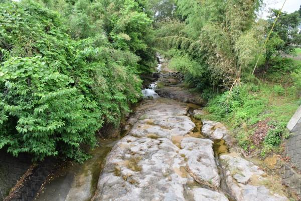 ホタルのいそうな川2