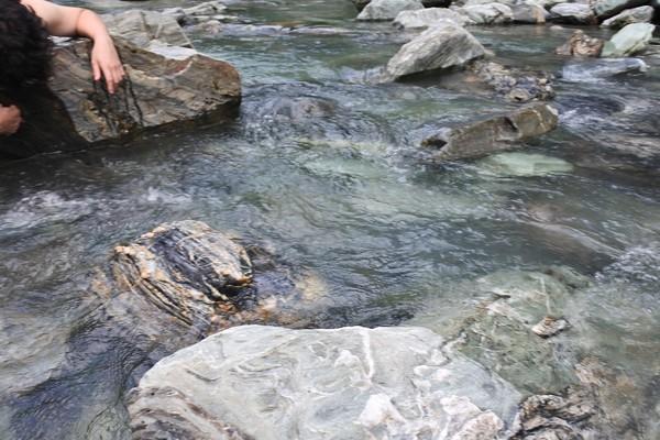 川の岩など