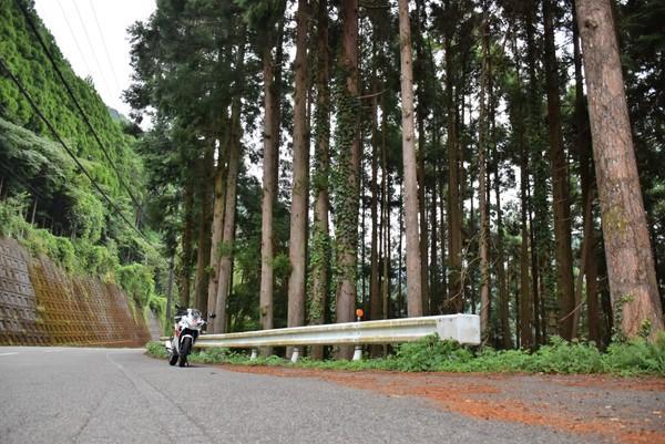 県道16号 山