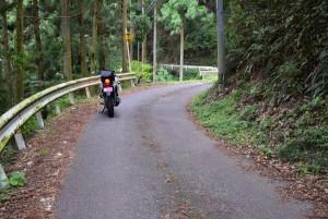 正木ダムへの道