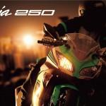 【125ccと250ccの違い】維持費はほぼ同じ!バイク選びのコツは使い道と排気量で決める
