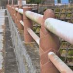 【ダムカード徳島県】福井ダム!タケノコの手すりがオシャレ。徳島では珍しく河川維持のみの仕様