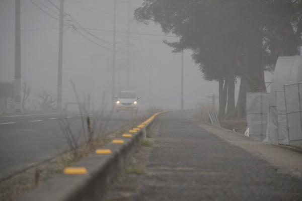 天気が悪い 霧 写真 画像