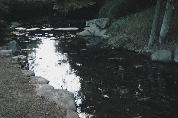 栗林公園 オリンパス OMD EM10 Mark3